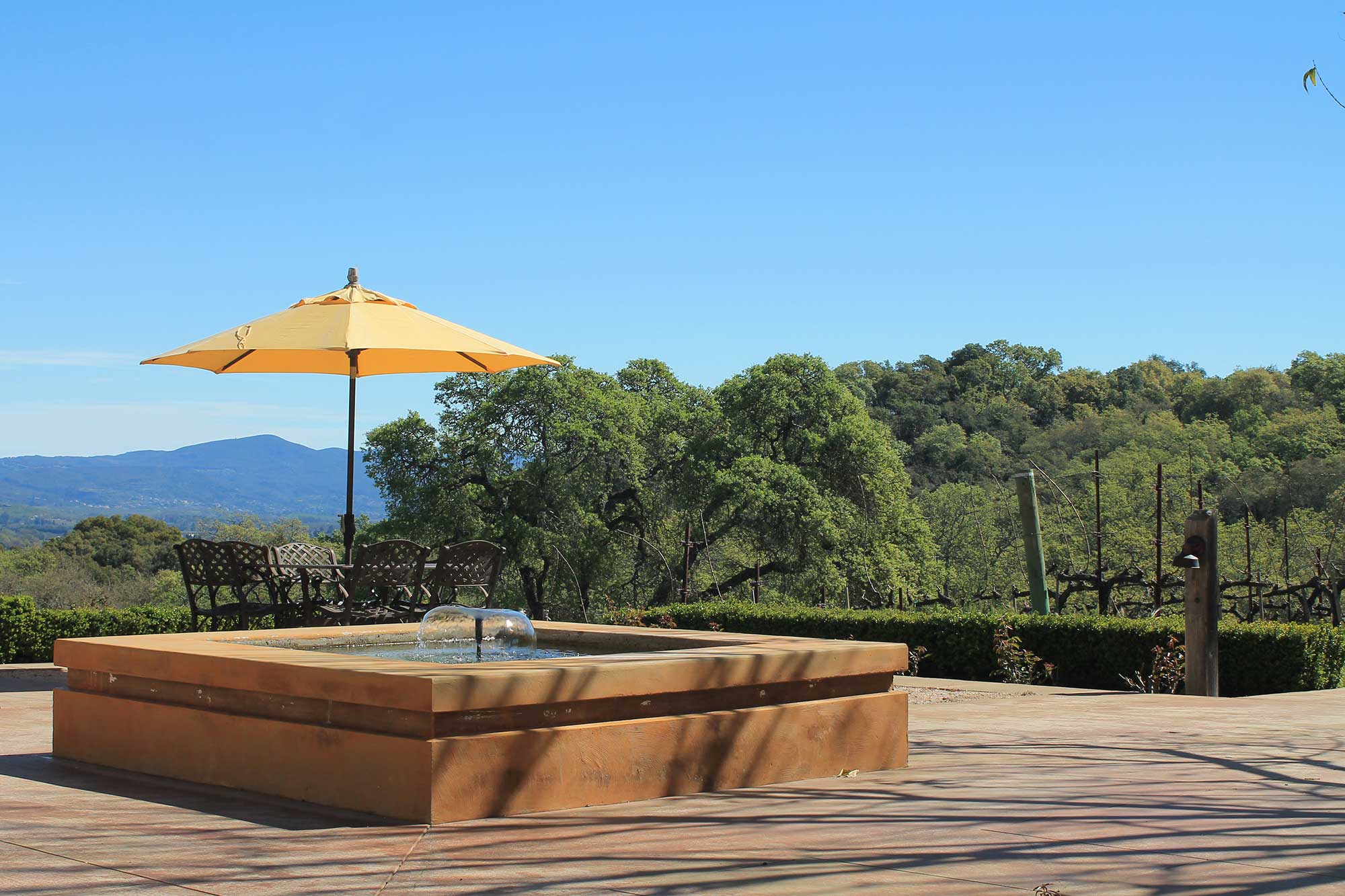 Our patio at Keever Vineyards in Yountville, California