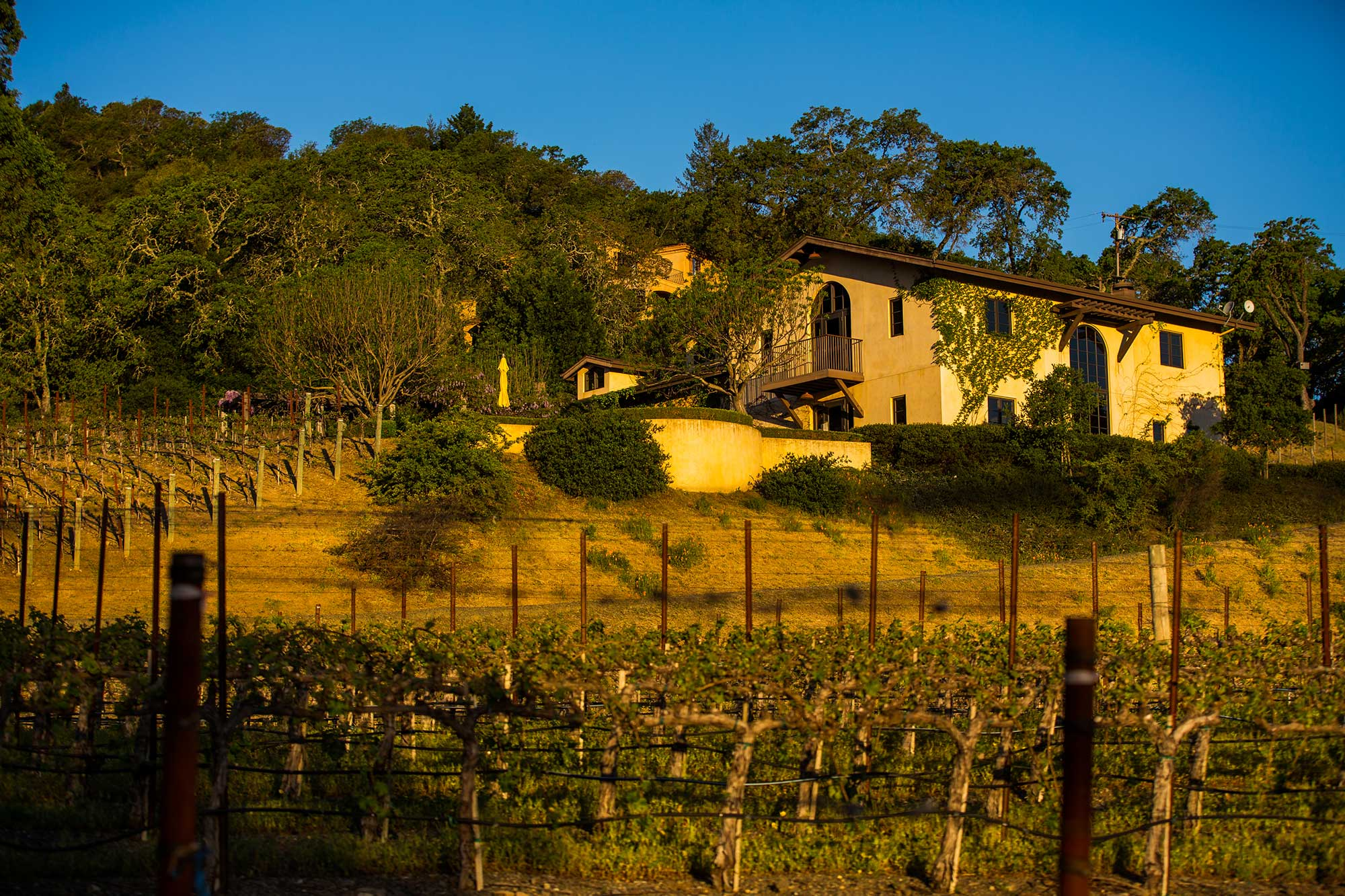 The Winery at Keever Vineyards in Yountville, California
